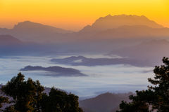 Mist with big mountain in the morning Stock Photo