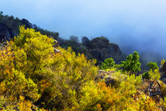 Mist bij bergen Royalty-vrije Stock Afbeeldingen