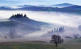 Mist bij dageraad in een groene vallei in Toscanië stock fotografie