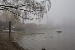 Mist bij de oever van het meer stock fotografie