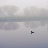 Mist bij de rivier Royalty-vrije Stock Afbeelding