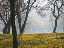 Mist bij zonnige de herfstochtend in Kalemegdan-park, Belgrado Royalty-vrije Stock Fotografie