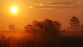 Mist bij Zonsondergang 1 stock footage