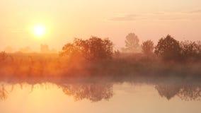 Mist bij Zonsondergang 6 stock footage