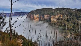 Mist blåa berg, Australien Royaltyfri Foto
