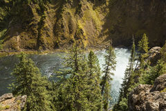 MIst at the bottom of Upper Falls of the Yellowstone River. Royalty Free Stock Photos