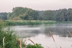Rogalin Landscape Park - mist on calm Warta river just before sunrise royalty free stock image