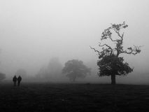 Mist in Cheshire Stock Images
