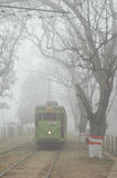Mist at the city of Joy Royalty Free Stock Photo