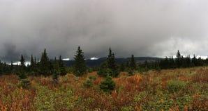 Mist in de bergen De mistweefgetouwen op het bos de aard van het Zuidelijke Oeralgebergte Regen en mist over het de herfstbos stock afbeelding
