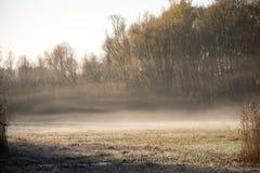 Mist in de de herfstzonsopgang Stock Foto