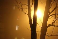 Mist in de stad Royalty-vrije Stock Afbeeldingen