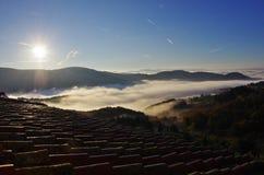Mist in de valleien dichtbij Florence bij zonsopgang stock afbeeldingen