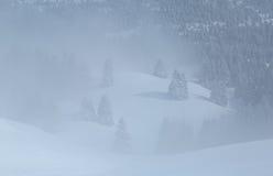 Mist in de winter Stock Fotografie