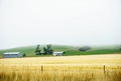 Mist descends over rural scene. Stock Photo