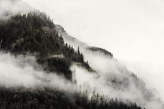 Mist die de bergbossen behandelen met lage wolk in Juneau Alaska voor mistlandschap Royalty-vrije Stock Foto