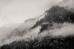 Mist die de bergbossen behandelen met lage wolk in Juneau Alaska voor mistlandschap Royalty-vrije Stock Fotografie