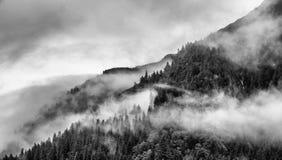 Mist die de bergbossen behandelen met lage wolk in Juneau Alaska voor mistlandschap Stock Foto