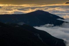Mist die de Bergen van Colorado bedekken Stock Fotografie