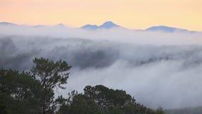 Mist die door de nevelige bergvallei vloeien met pijnboombos op de voorgrond, Chiangmai, Thailand stock videobeelden
