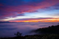 Mist die het landschap bedekken bij zonsopgang in Laguna Beach, Californië Stock Foto