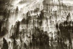 Mist die die over het dorp van Cemoro Lawang in de ochtend stromen aan ten noordoosten van MT Bromo, Indonesië wordt gevestigd Stock Afbeeldingen