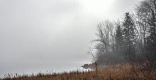 Mist die van de Rivier van Ottawa toenemen - oever met verspreid zonlicht Stock Fotografie