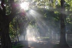 Mist door atitlan meer Royalty-vrije Stock Foto's