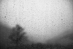 Mist droplets Stock Photo