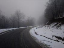 Mist för dimma för Treeline väg höger arkivbilder