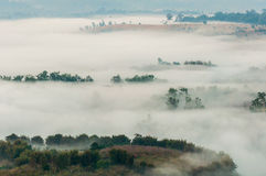 Mist. Fog mountain tree cold fresh air stock image