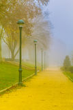 Mist in het Park Royalty-vrije Stock Foto's