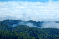 Mist and high peaks. In thailand stock photos
