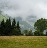 Mist on hill Stock Photography