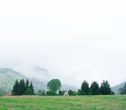 Mist on hill Royalty Free Stock Image