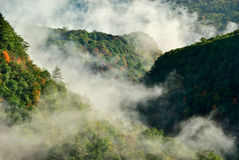 Mist in Hills Royalty Free Stock Images