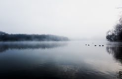 Mist hovering over a cold lake in Goldsworth Park, Surrey, Wokin Royalty Free Stock Photography