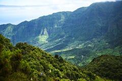 Mist i bergen i norden av ön av madeiran Fotografering för Bildbyråer