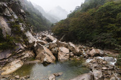 Mist i dalen Royaltyfria Bilder