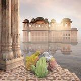 Mist i Indien Arkivbilder