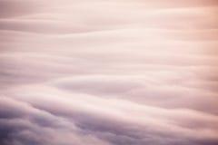 Mist i soluppgångbakgrund arkivbild