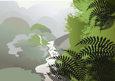 Mist in the jungle. The majestic view to the jungle in the mist from the mountains Stock Image