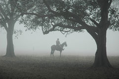 Mist in Kolkata stock afbeeldingen