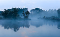 Mist Lake. If you sleep in you will miss the wonders of a new day Royalty Free Stock Image