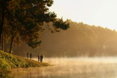 The mist on Lake Royalty Free Stock Photography
