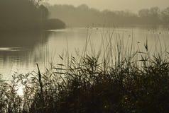 Mist on lake Stock Image
