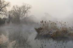 Mist landscape Royalty Free Stock Photo