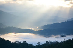 Mist with light beam. Morning mist with light beam  at Tak,Thailand Stock Photo