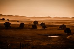 Mist in the Midlands : Sepia. A sepia view of mist covered foothills and a tree dotted pasture in the Natal Midlands, South Africa royalty free stock image
