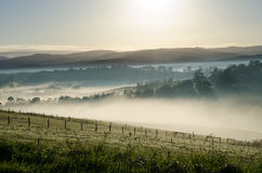 Mist royalty free stock photos